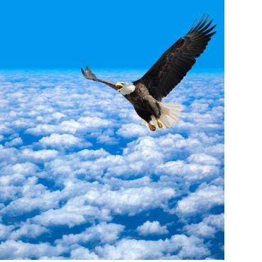 prayer eagle